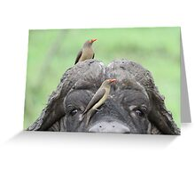 Friends !! Greeting Card