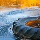 Tire in a Frozen Stream During Sunset by aebritton