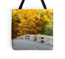 The Glory of Fall at Acadia Tote Bag