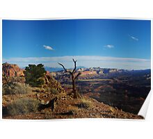 Capitol Reef impression Poster
