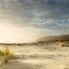 early morning sunlight and sand by kathybellingham