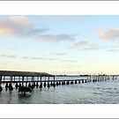 wharf at Taren Point by kathybellingham