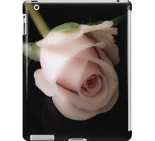 Ipad Case iPad Case/Skin