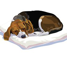 Sleeping beagle on the pillow by 1357911nong