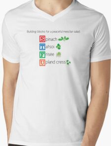 Building blocks for a peaceful mesclun salad (salad) Mens V-Neck T-Shirt