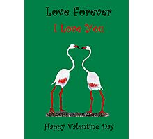 Bird In Love Valentine Day Special Photographic Print