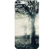 Trees in the Mist iPhone Case/Skin
