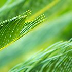 Abstract in Green by journey7