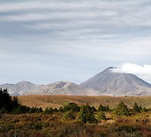 Ngauruhoe in Autumn by May-Le Ng