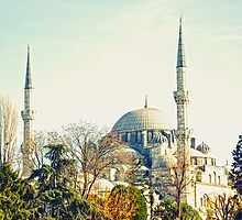 Blue mosque by Pascal Deckarm