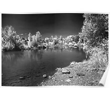 The Desert Waterhole  Poster