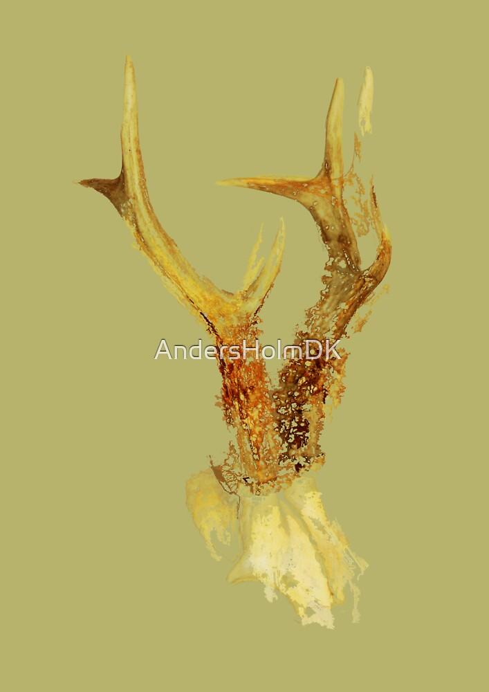 Antlers 02 by AndersHolmDK