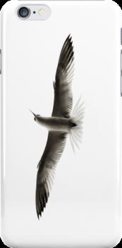 Flight by A. Duncan