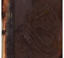 Old book cover with snake by G3no