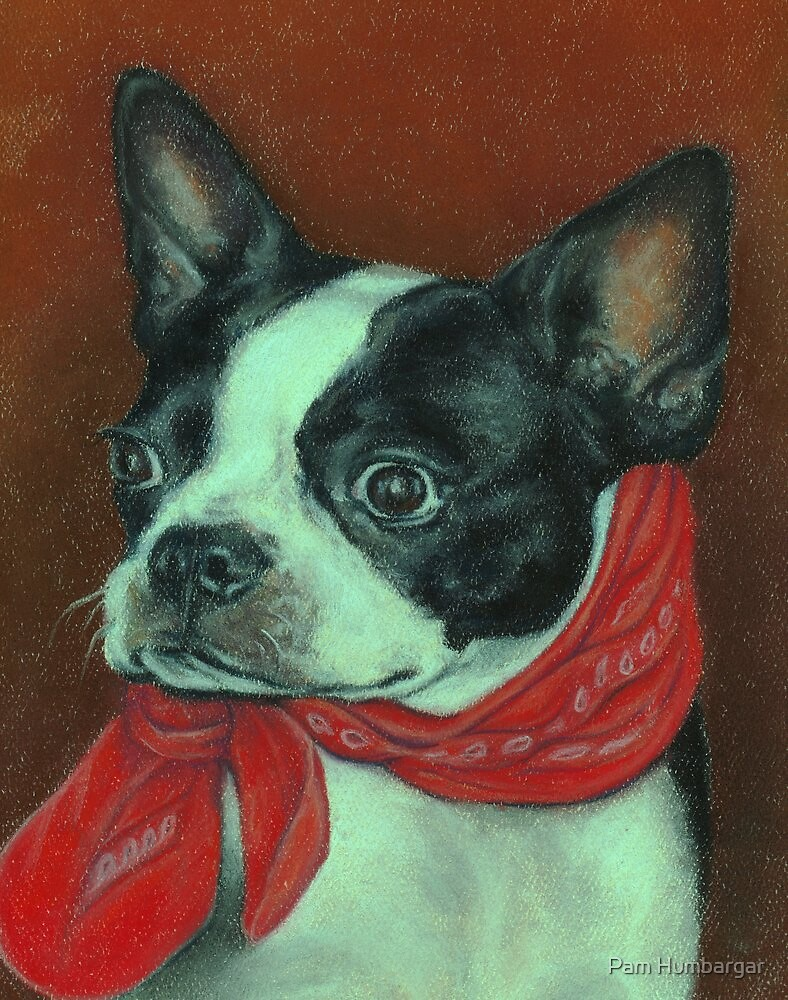 Boston With a Red Bandana by Pam Humbargar