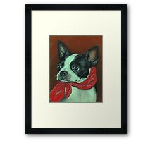 Boston With a Red Bandana Framed Print