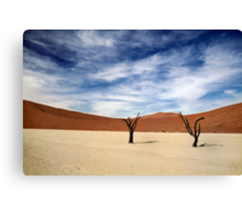 We stood side by side  Canvas Print
