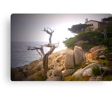 Ghost Tree 1 Canvas Print