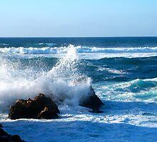 Sea Spray by BarbaraSnyder