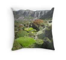 West Wall Throw Pillow