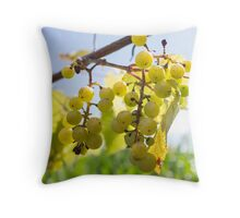 One of my favorites... Throw Pillow