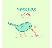 Impossible Love Photographic Print