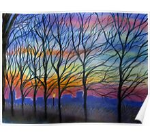 Sunset Trees in Washington Heights Poster