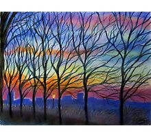 Sunset Trees in Washington Heights Photographic Print