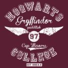 Hogwarts College Gryffindor 1997 Quidditch cup winners by bomdesignz