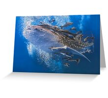 The Gentle Giant Greeting Card