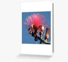Jamaica Flower Greeting Card