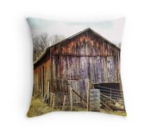Beauty in Shambles Throw Pillow