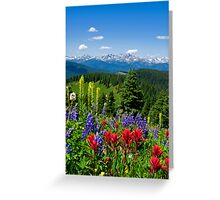 Wildflowers with Distant Snowy Mountains  Greeting Card
