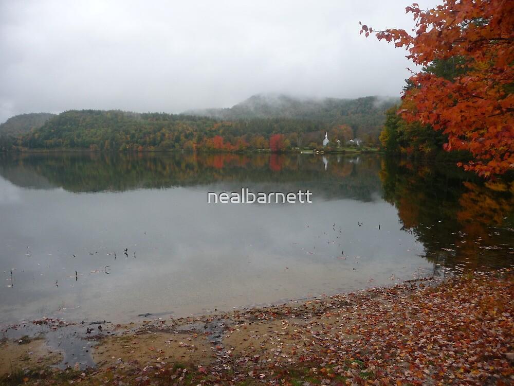 New England scene in clouds and rain by nealbarnett
