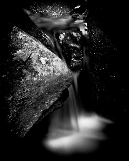 Holly River, WV - B&W by RomeoFotografia