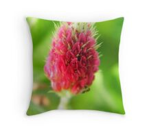 Crimson Clover on the Prairie Throw Pillow
