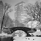 Gapstow Bridge, Study 2 by Randy  Le'Moine