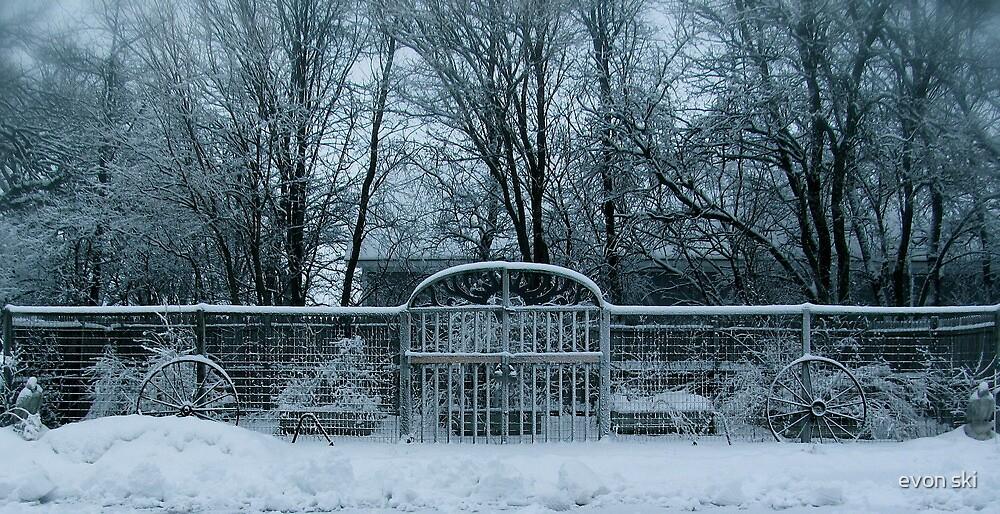my garden sleeps . . . . . by evon ski