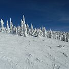 Big White Snow Monster by danielhardinge
