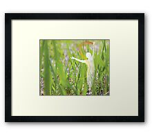 earth & being 9 Framed Print