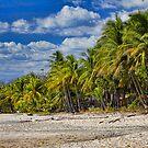 SANTA TERESA BEACH by HanselASolera