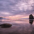 Cannon Beach sunset, OR by Andrey Popov