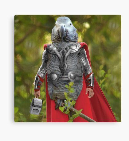 Grey parrot Thor Canvas Print