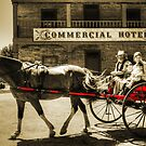Horse and buggy at Wilberforce by Chris Brunton