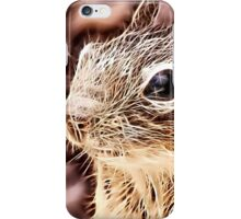 Wild nature - squirrel iPhone Case/Skin