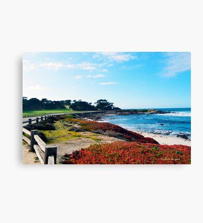 17 Mile Drive Shoreline Canvas Print