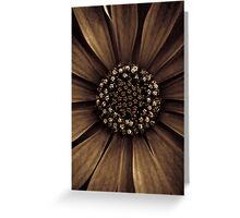 A nutella-dipped blossom to start your day Greeting Card