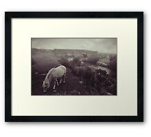 Foggy day in Dartmoor Framed Print