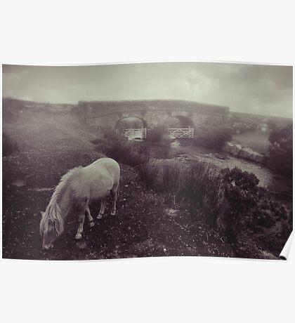 Foggy day in Dartmoor Poster