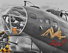 "Sally ""B"" HDR  by Colin J Williams Photography"